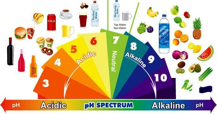 Alkaline diet - alkaline foods (alkalizing) - acids (acidifying) 4